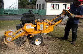 tupeo-ms-tree-removal-company